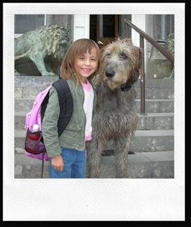 eirene-wolfhound