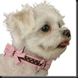 bow wow bows collar brown and pink